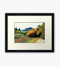 Pasturized Color Framed Print