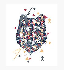 Wolf - Geometric Forms and Colors Photographic Print