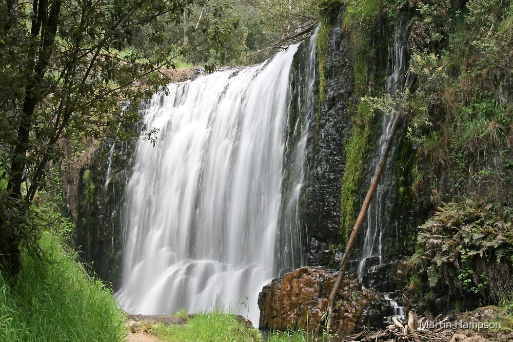 Guide Falls in Tasmania by Martin Hampson
