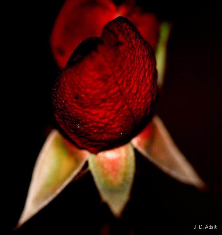 Love Bumps by J. D. Adsit