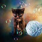 Playful cute black kitten by Gatterwe
