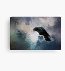 A beautiful painted black crow Canvas Print