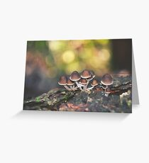 Fairy Bonnets Greeting Card