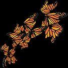 Monarch by Tom Burns