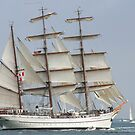 BARQUE SAGRES by fsmitchellphoto