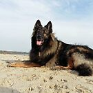 Hanging out at the beach by Bine