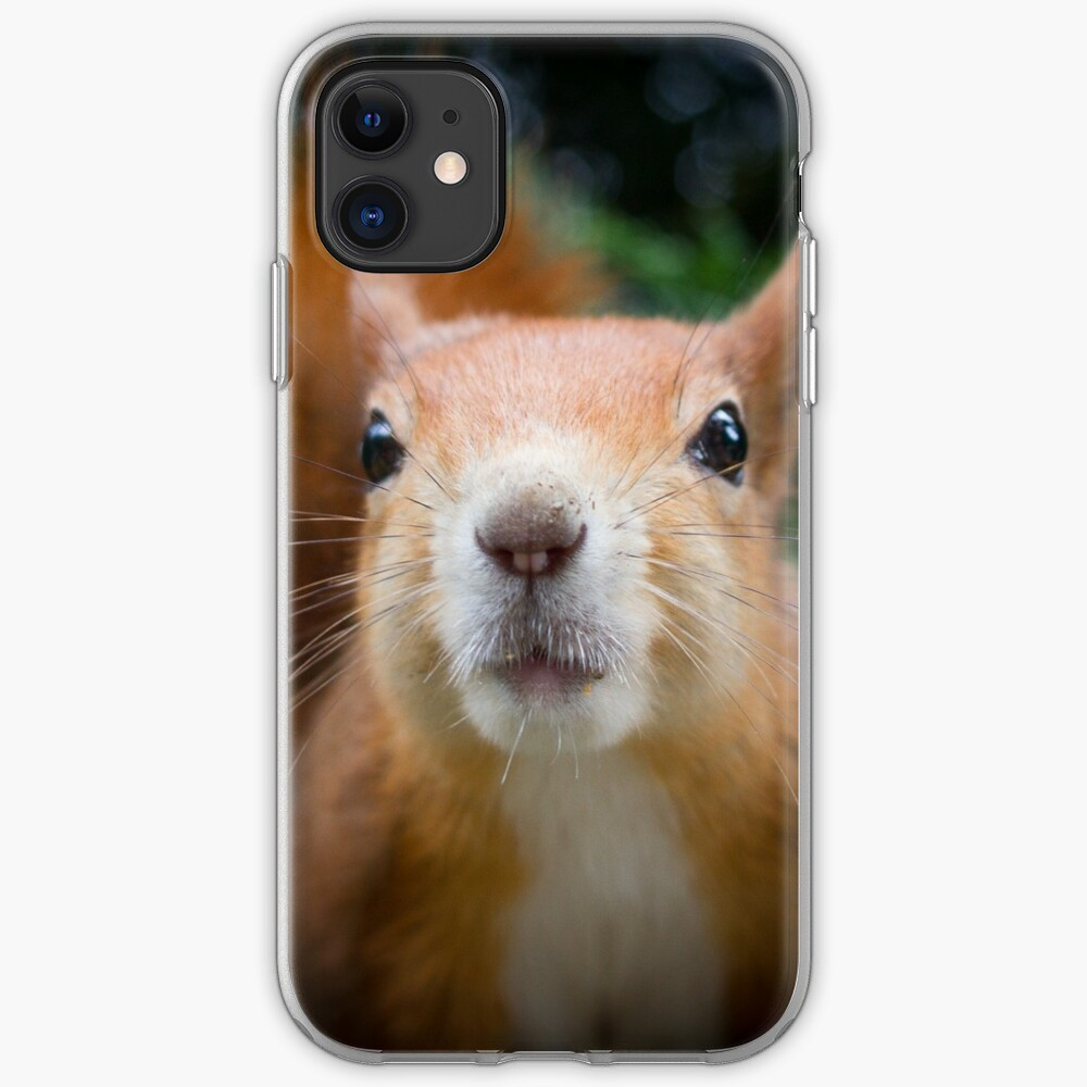 Squirrel all up in your face iPhone Case & Cover