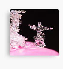 X-Mas Snowflake ! Canvas Print