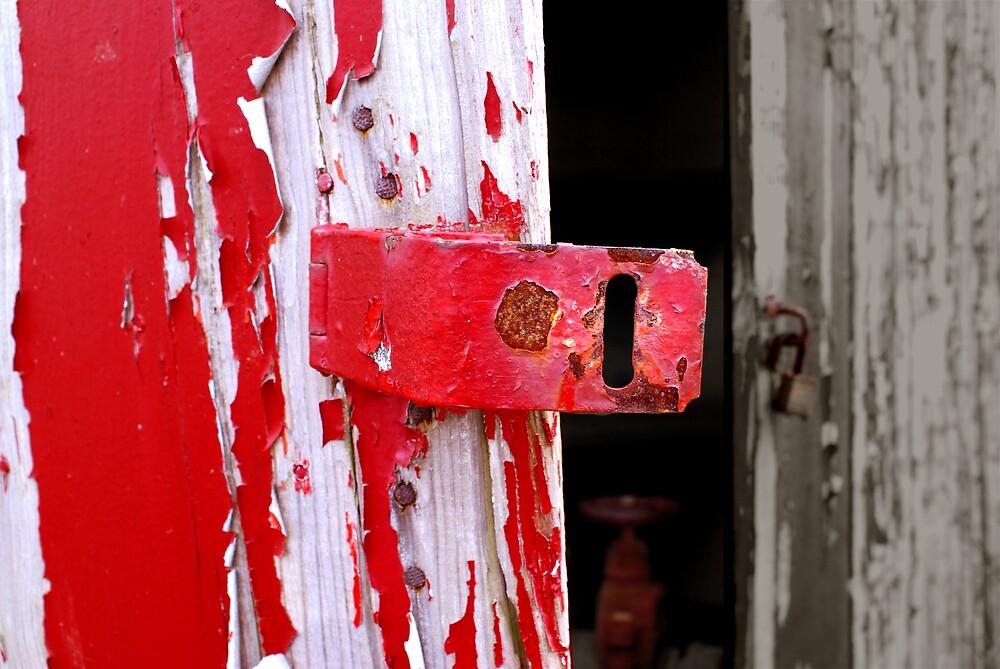 Red Hinge Series 3 by Rod  Adams