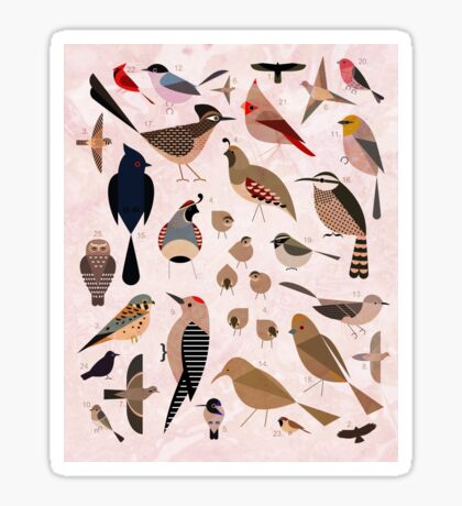 Sonoran Birds Sticker