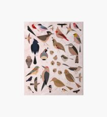 Sonoran Birds Art Board