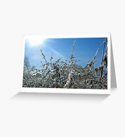 The Frozen Bush Greeting Card