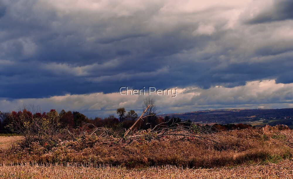 Storm Beyond by Cheri Perry