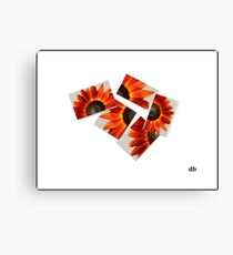 broken flower Canvas Print