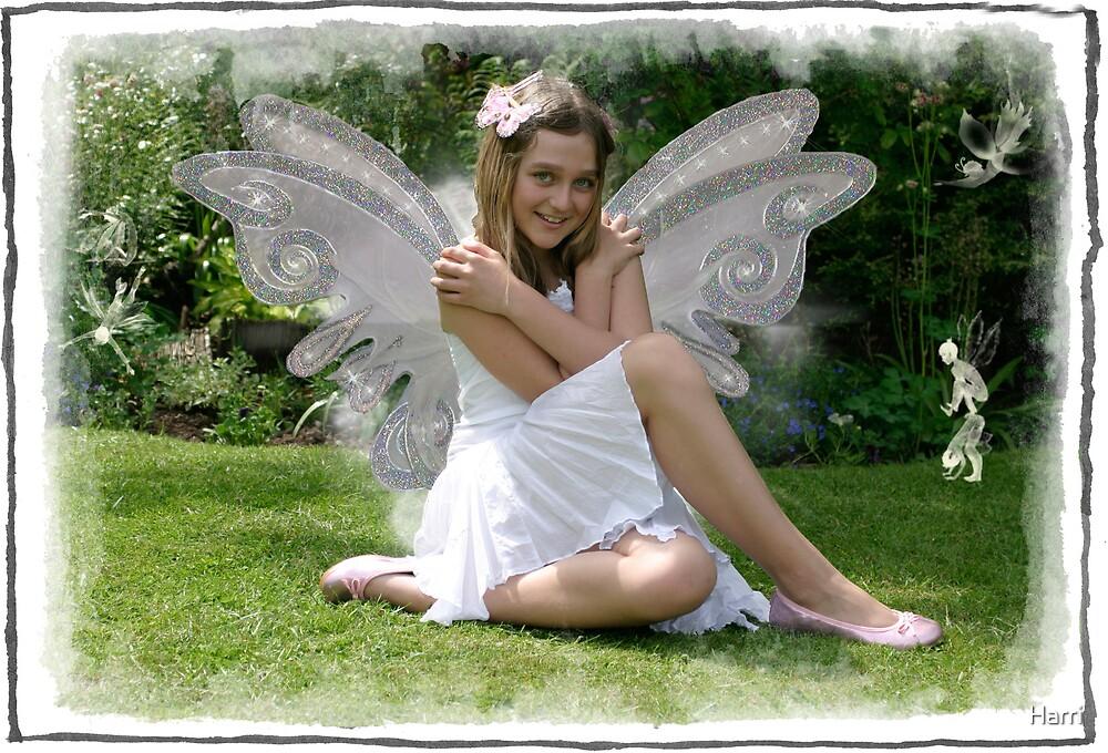 Fairy Friends by Harri
