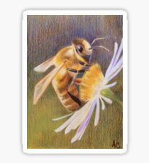 Honey Bee Sticker