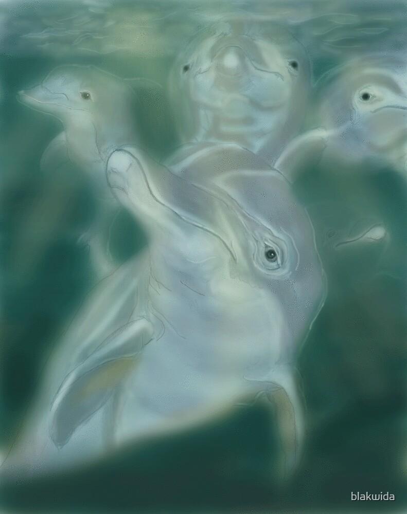 dolphine pod by blakwida