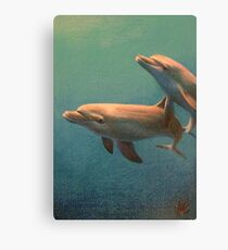Bottle Nose Dolphins Canvas Print