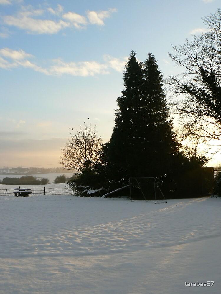 Snow in Broome Park Farm by tarabas57