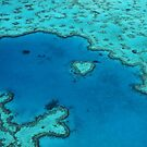 Heart Reef  by Tony Middleton
