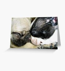 Pooped Puppies Greeting Card