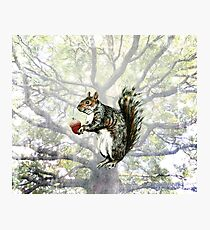 Squirrel with Acorn and Grunge Tree Photographic Print