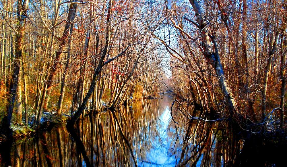 Up The Creek by badbeeb