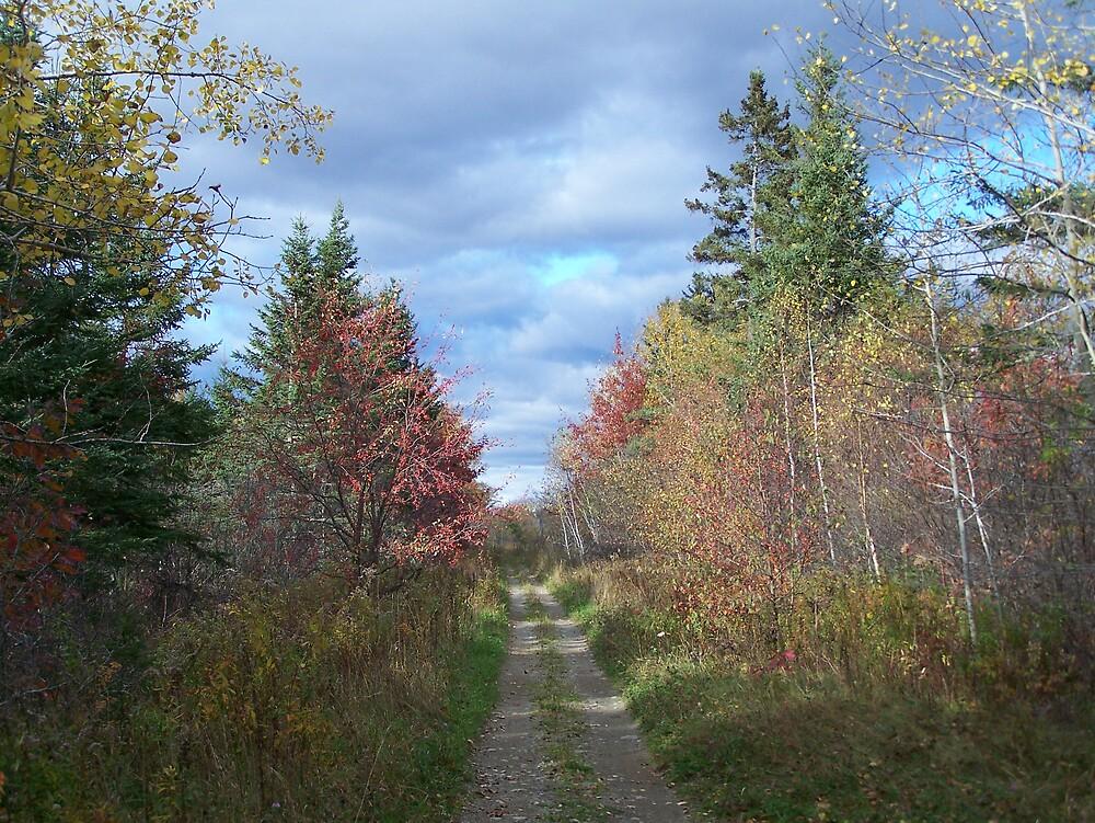 Cloudy Trail by Gene Cyr