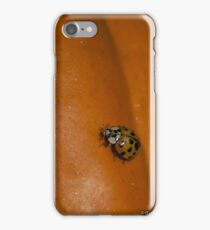 Japanese Beetle on a Pumpkin iPhone Case/Skin