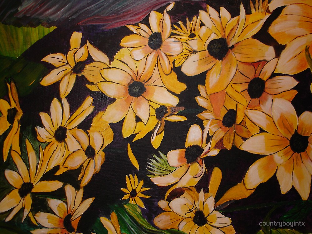 painted daisies field by countryboyintx