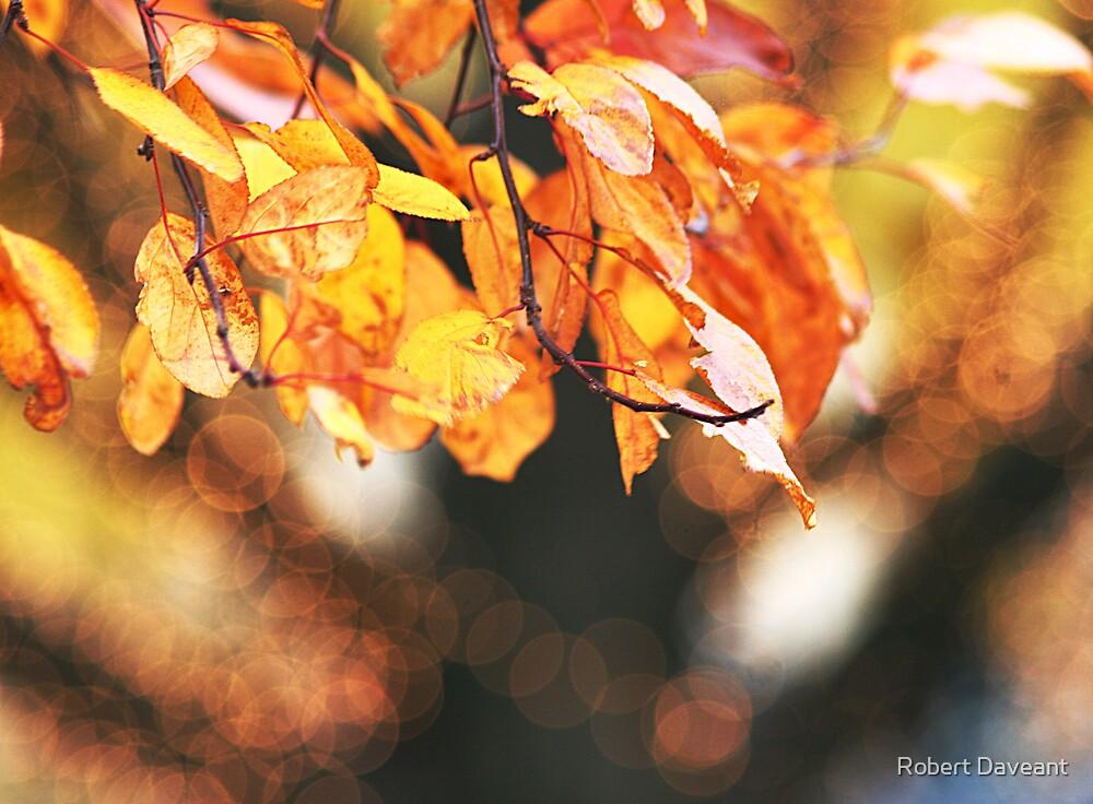 Autumn Glory by Robert Daveant