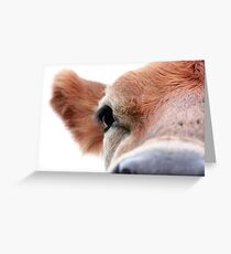 Mooooooooooooooo Greeting Card