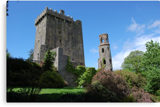 Blarney Castle by mik013