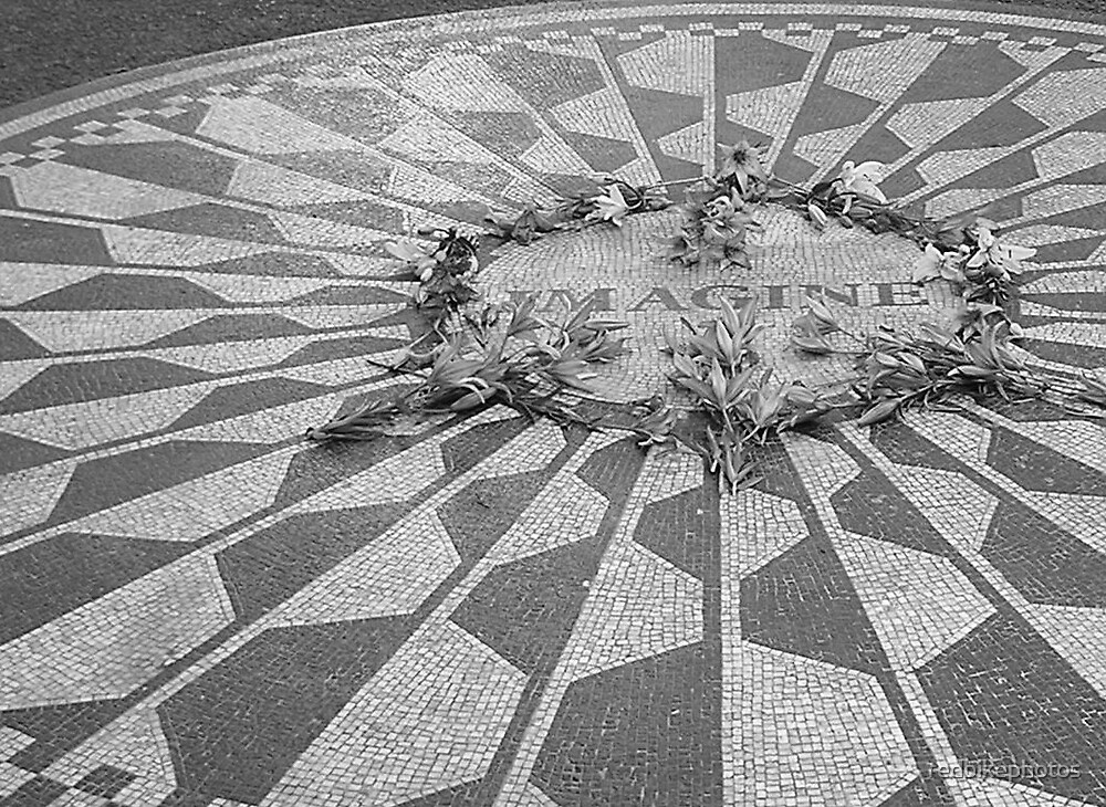 strawberry fields forever by redbikephotos