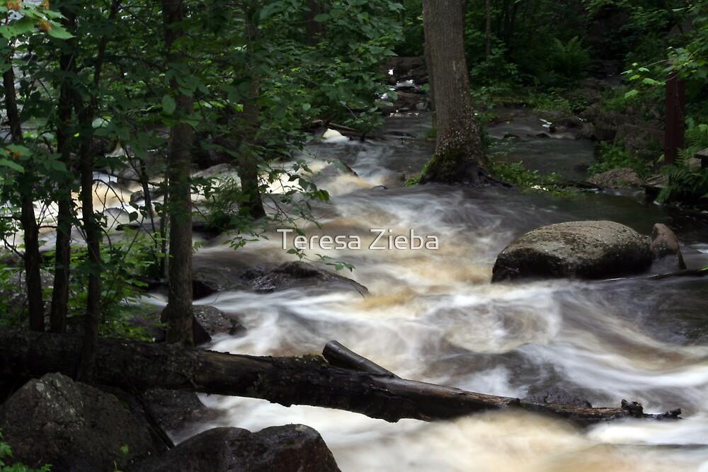 McGillivray Falls  by Teresa Zieba