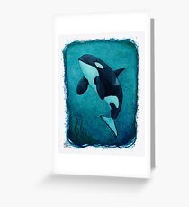 """The Matriarch"" by Amber Marine ~ killer whale / orca watercolor painting, (J2 Granny) art © 2016 Greeting Card"