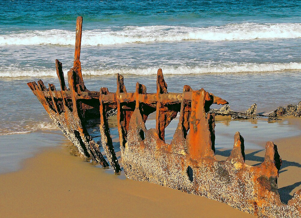 Wreck of the SS Dicky by Peter Murphy