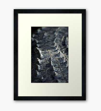 Deadly Framed Print