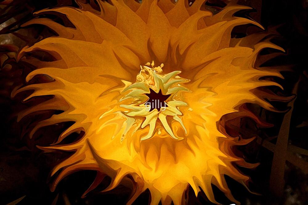 Shining through by Gill Duncan