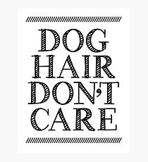 dog hair don't care Photographic Print