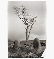Ettrick Bay Stone Circle Poster