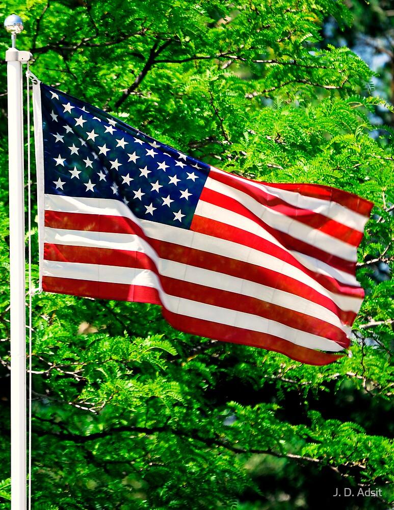 Flag Flyer by J. D. Adsit