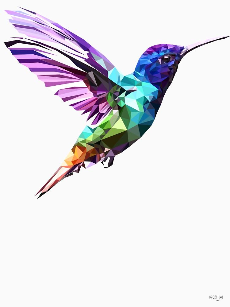 Hummingbird by exya