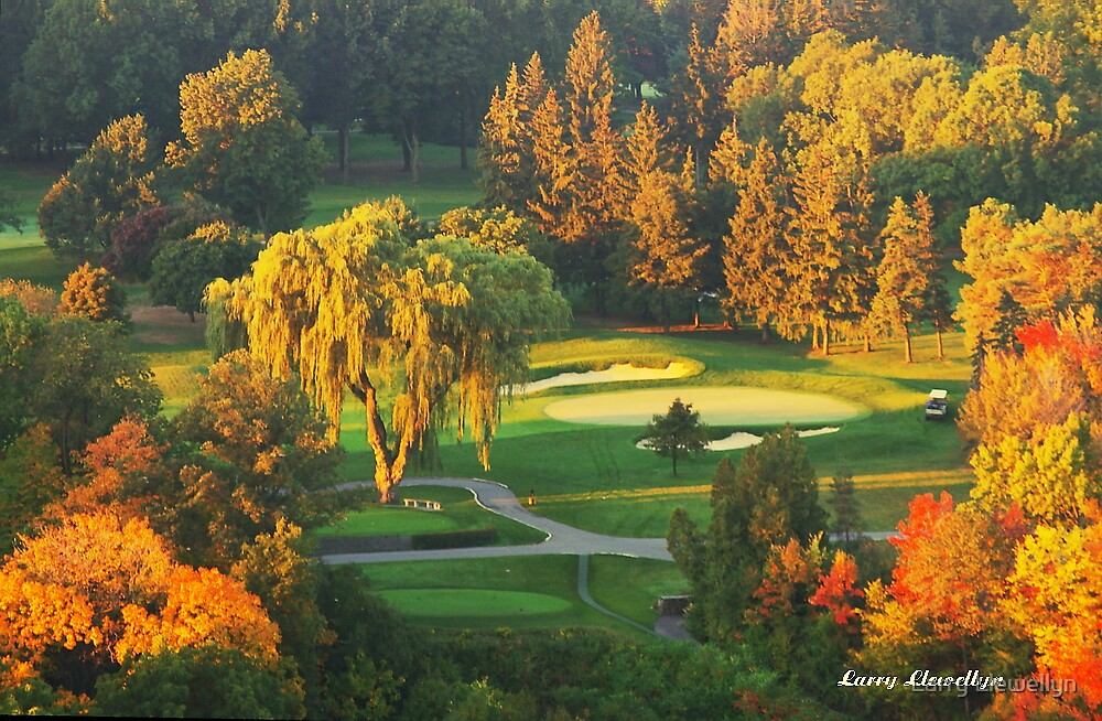 The Final Hole by Larry Llewellyn