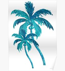 Two Coconut Palm Trees Poster