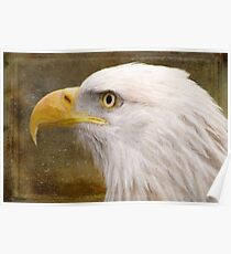 Strength and Beauty - Nature Art Poster