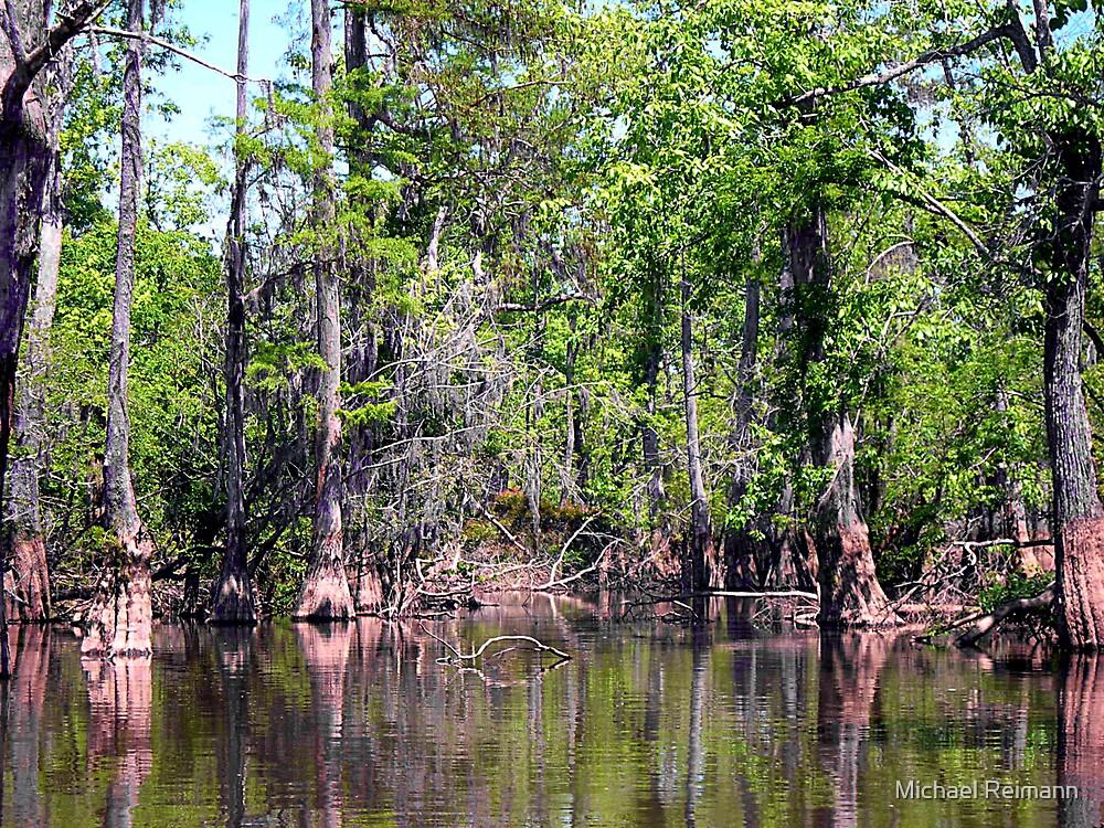 Swamp Simplicity by Michael Reimann