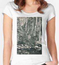 All was tranquil Women's Fitted Scoop T-Shirt