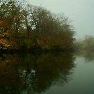 Lagoon 2 by viqi