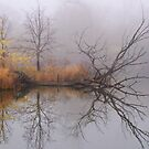 Lagoon 4 by viqi